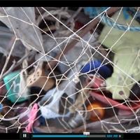 http://player.vimeo.com/video/31926890?title=0&byline=0&portrait=0&color=cdfde5