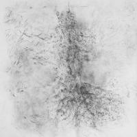 2017, graphite on cotton, 150 cm x 150 cm
